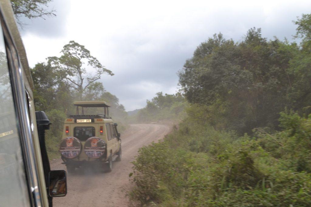 jeeps on safari tanzania